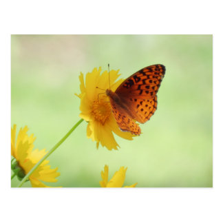 Fritillary Fun - Butterfly Postcard