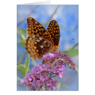 Fritillary on Blue - Butterfly Card