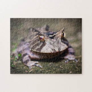 Frog 01 Digital Art - Photo Puzzle