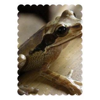 "frog-34.jpg 5"" x 7"" invitation card"