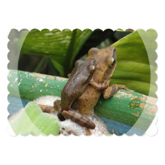 "frog-44.jpg 5"" x 7"" invitation card"