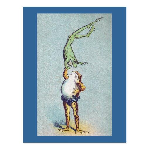Frog Balancing Act Vintage Postcards