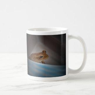 Frog behind blue neat animal amphibian photo coffee mugs