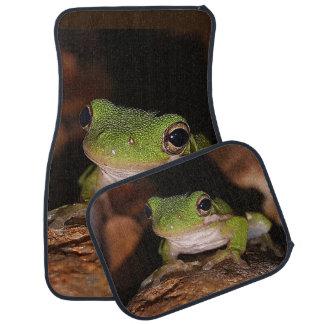 Frog Car Mats