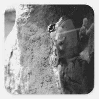 Frog Climbing Glass Square Sticker