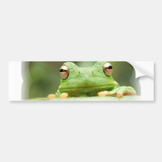 Frog Eyes Bumper Sticker