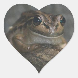 Frog Heart Sticker