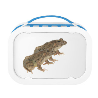 Frog image for Yubo-Lunchbox-Blue Lunch Box