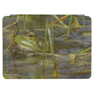 Frog in the Water Tablet Cover iPad Air Cover