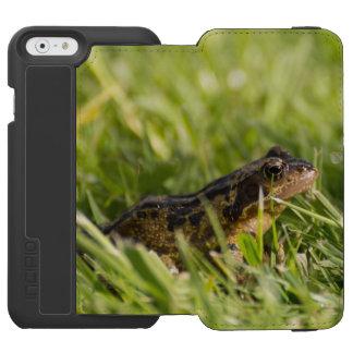 Frog Incipio Watson™ iPhone 6 Wallet Case