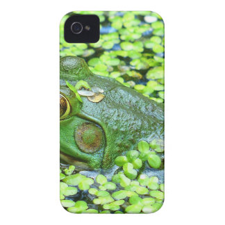 frog iPhone 4 covers