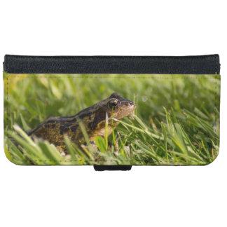 Frog iPhone 6 Wallet Case