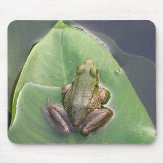 Frog Mousepad