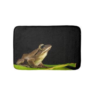 Frog on Lily Pad at Night Bath Mat