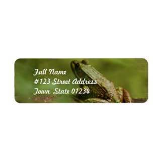 Frog on Log Mailing Labels