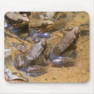 frog pad mouse pad