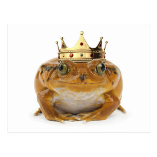 Frog Prince - front Postcard