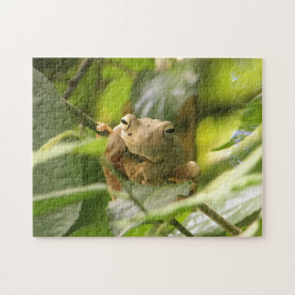 frog puzzle - 11x14