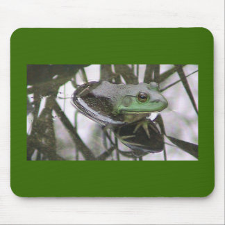 Frog Reflection mousepad