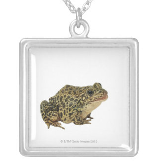 Frog shadow silver plated necklace