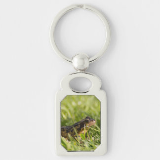 Frog Silver-Colored Rectangle Keychain