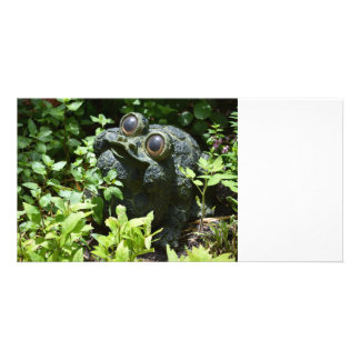 frog statue in basil plants cute garden figure photo cards