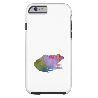 Frog Tough iPhone 6 Case