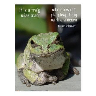 Frog & Unicorn Postcard