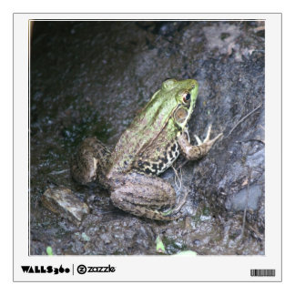 Frog, Wall Decal. Wall Sticker
