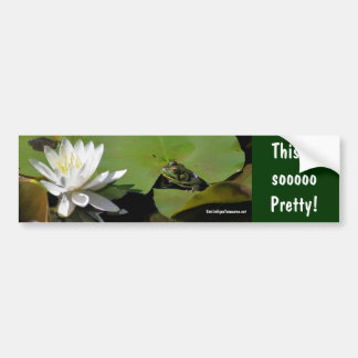 Frog Water Lily Inspirational Bumper Sticker