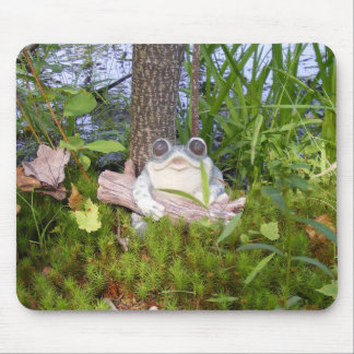 Froggie at the Pond Mouse Pad