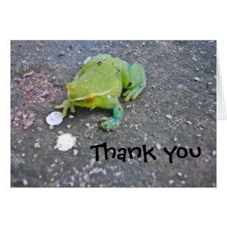 Froggie vous remercient de noter carte de correspondance