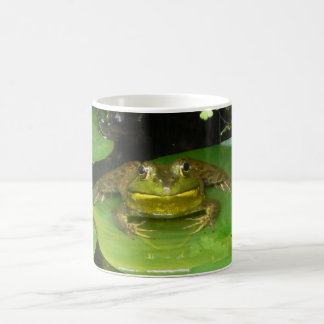 Froggy Face Coffee Mug