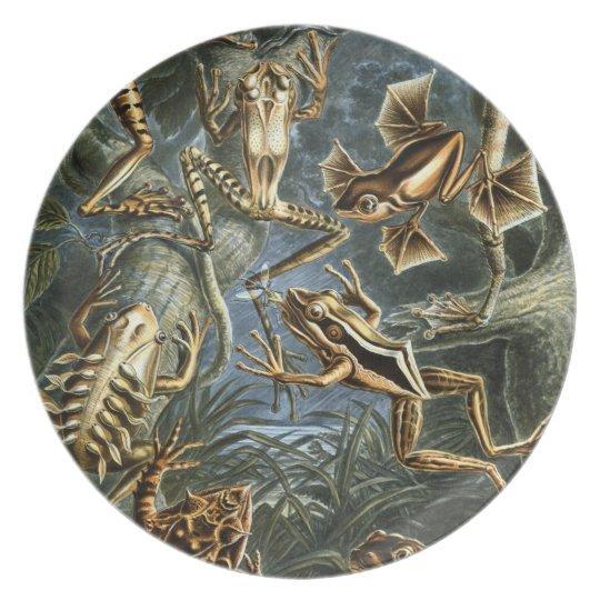 Froggy Fancies Plate