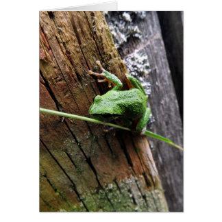 Froggy v card