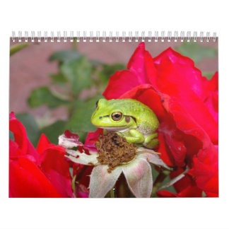 Frogs 2009 calendars