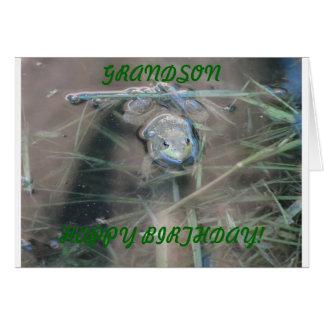 Frogs, Grandson Birthday Card