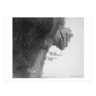 Frog's Head Rock on Deadwood Road Photograph Postcard