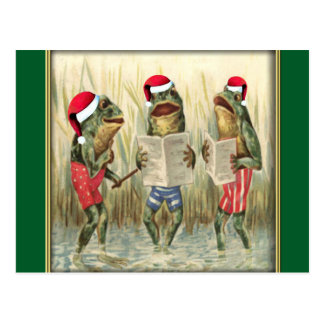 Frogs Singing Merry Christmas Postcard