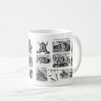 Frogs & Toados Coffee Mug