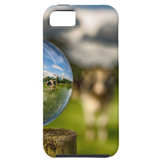 From Grass To Glass iPhone 5 Cases