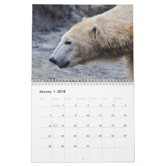 From Macro to Micro: Wonder of the Natural World Calendar