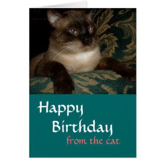 From Your Cat - Siamese Cat Birthday Card