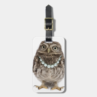 Front view of a Young Little Owl Luggage Tag