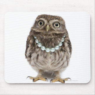 Front view of a Young Little Owl wearing a Mouse Pad