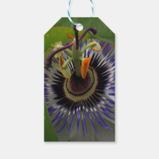 Front View of Beautiful Passiflora Flower Pack Of Gift Tags