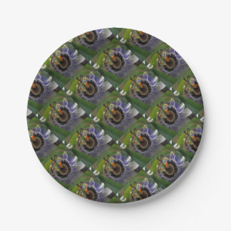 Front View of Beautiful Passiflora Flower Paper Plate