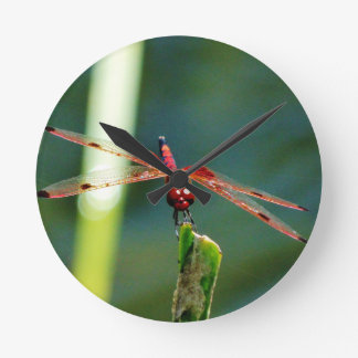 Frontal Red and Black Dragonfly Clock