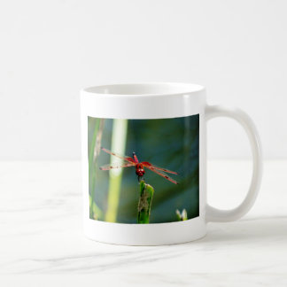 Frontal Red and Black Dragonfly Coffee Mug