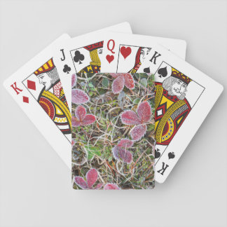 Frost covered leaves, Canada Playing Cards